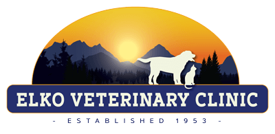 Elko Veterinary Clinic
